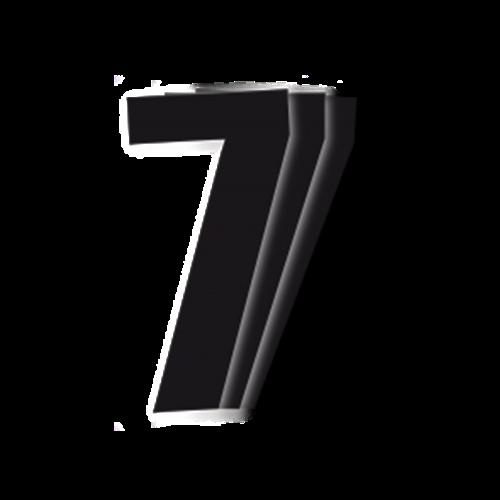 Blackbird Race Numbers Black - pack of 3 cm.13X7 7