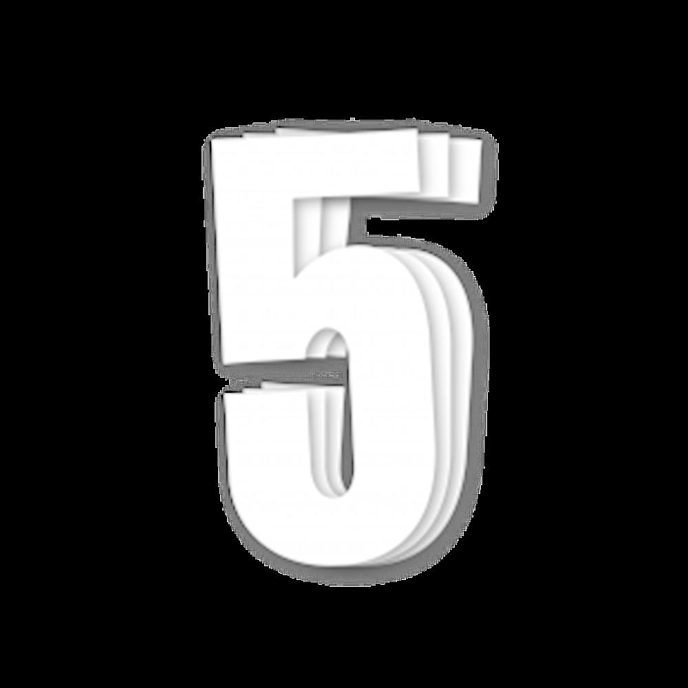 Blackbird Race Numbers White - pack of 3 cm.13X7 5