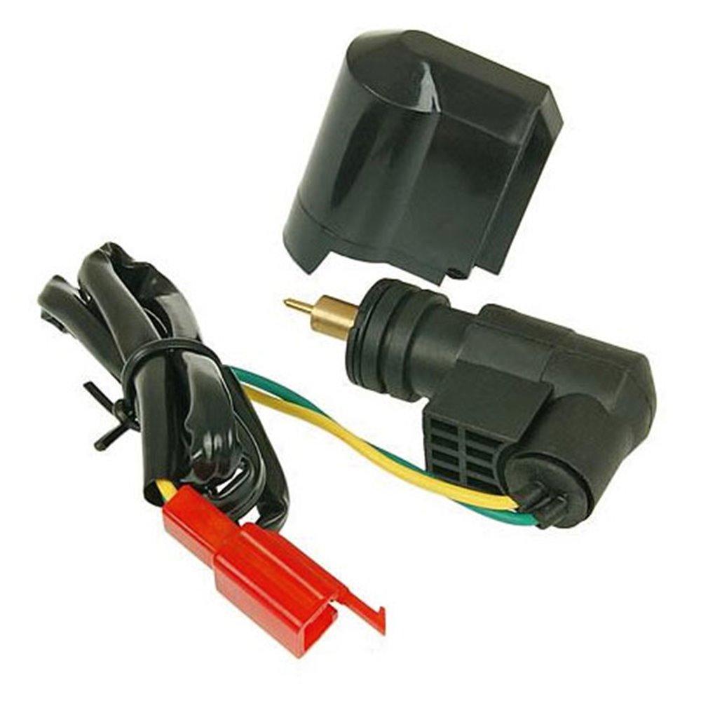 Naraku Electric choke, Dellorto-model